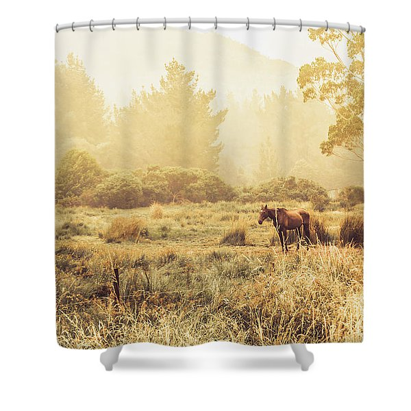 Stallion Homestead Shower Curtain
