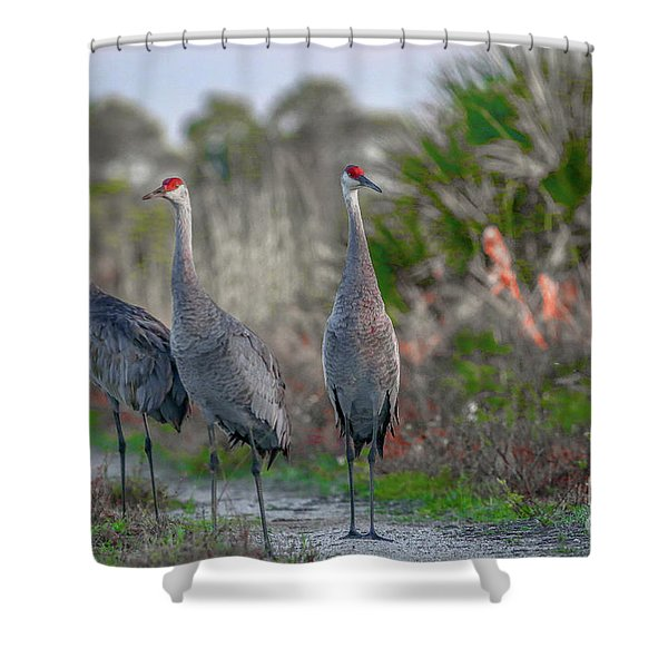 Shower Curtain featuring the photograph Standing Sandhills by Tom Claud