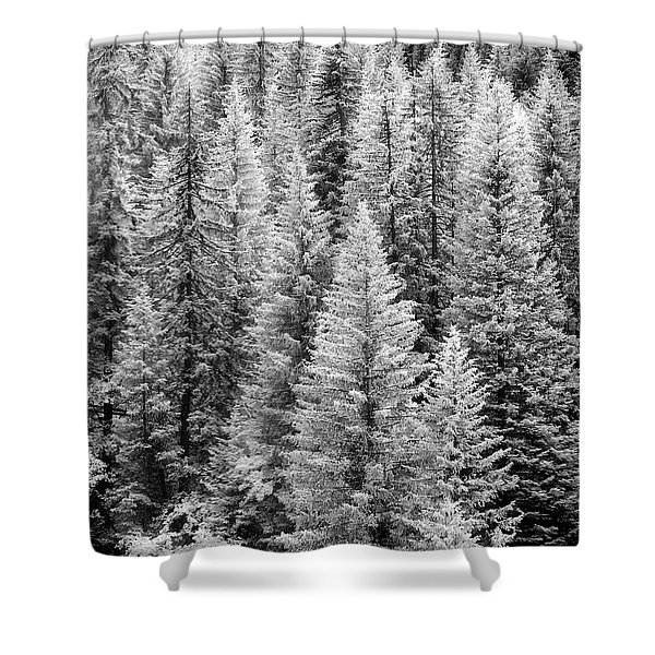 Standing Tall In The French Alps Shower Curtain