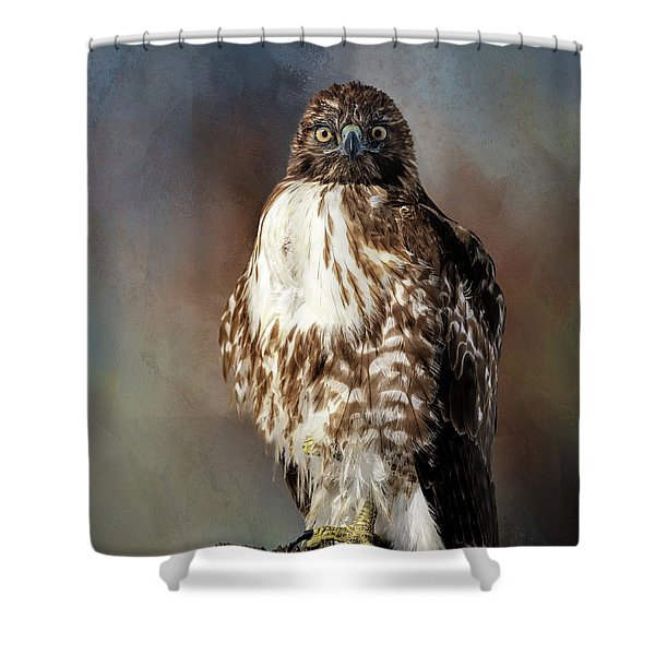 Stare Down With A Hawk Shower Curtain