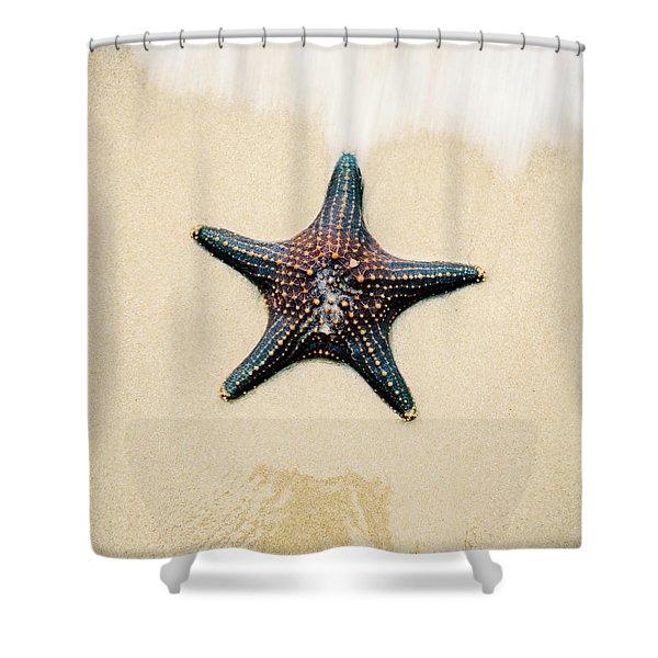 Starfish On The Beach Sand. Close Up. Shower Curtain