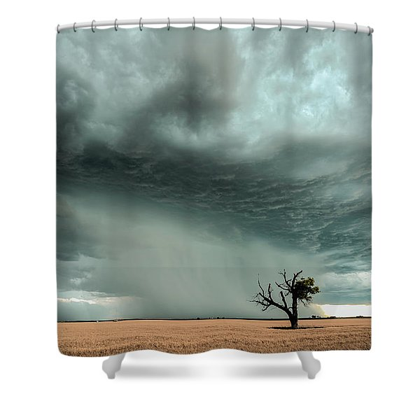 Strong Lone Tree Shower Curtain