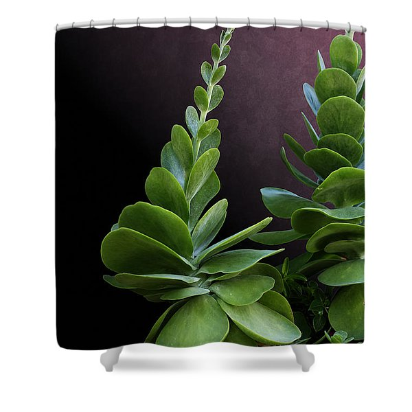 Succulent Spear Shower Curtain