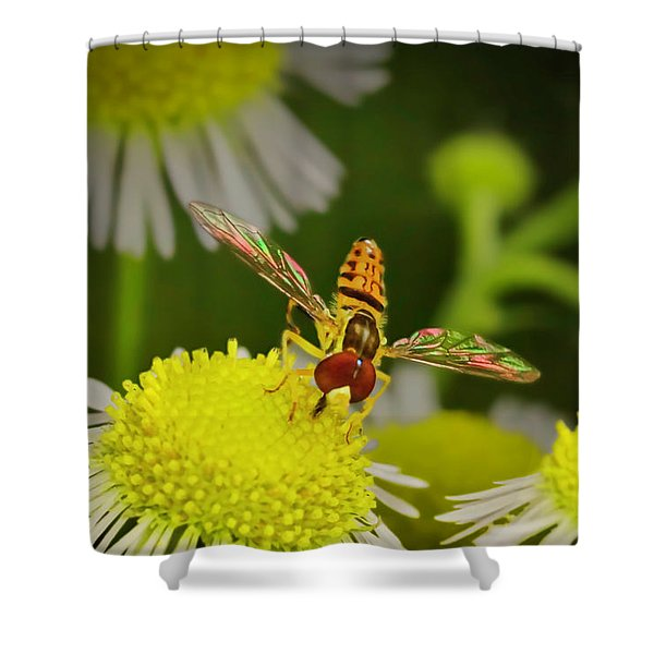 Sugar Bee Wings Shower Curtain