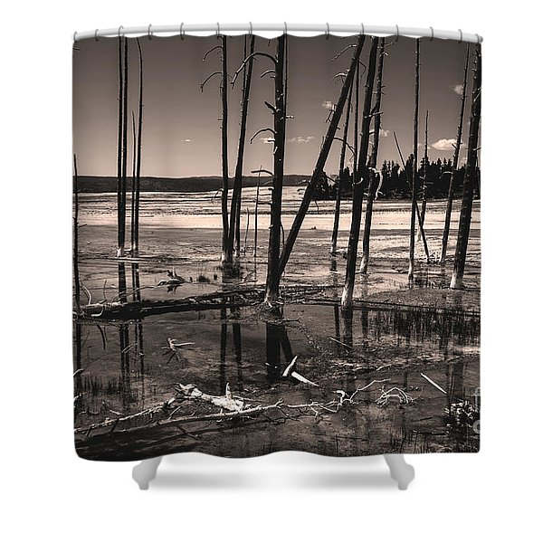 Shower Curtain featuring the photograph Sulfur Field by Mae Wertz