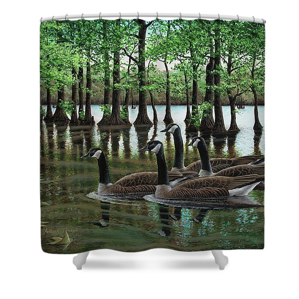 Summer Among The Cypress Shower Curtain