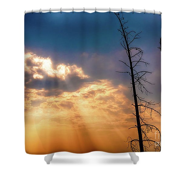 Sunbeams Shower Curtain