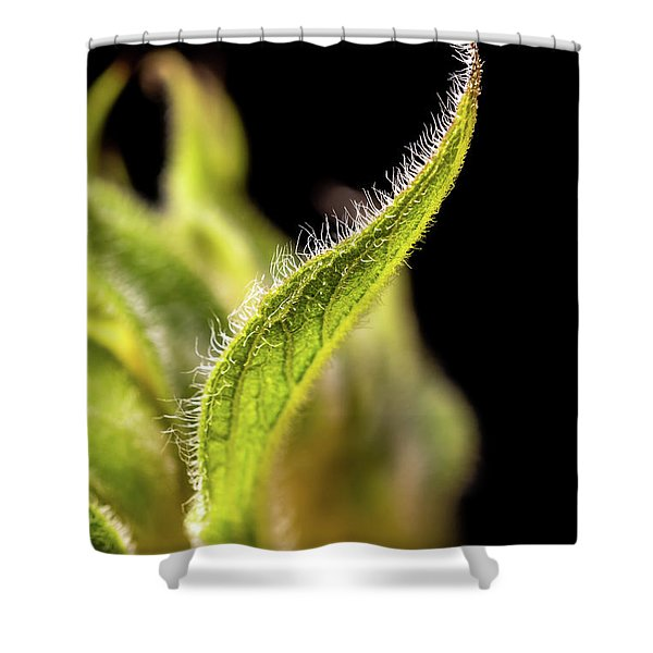 Sunflower Leaf Shower Curtain
