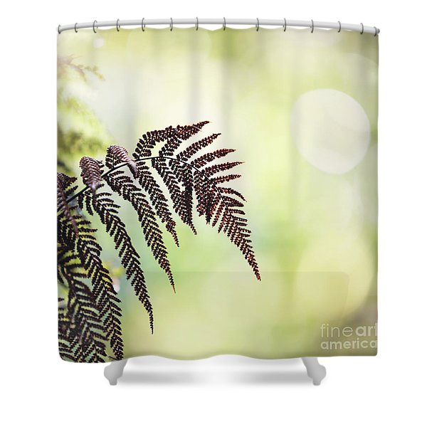 Sunny Awakenings Shower Curtain