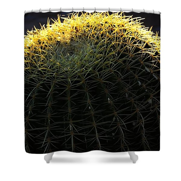 Sunset Cactus Shower Curtain