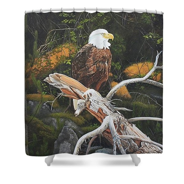 Surveying The Sea Shower Curtain