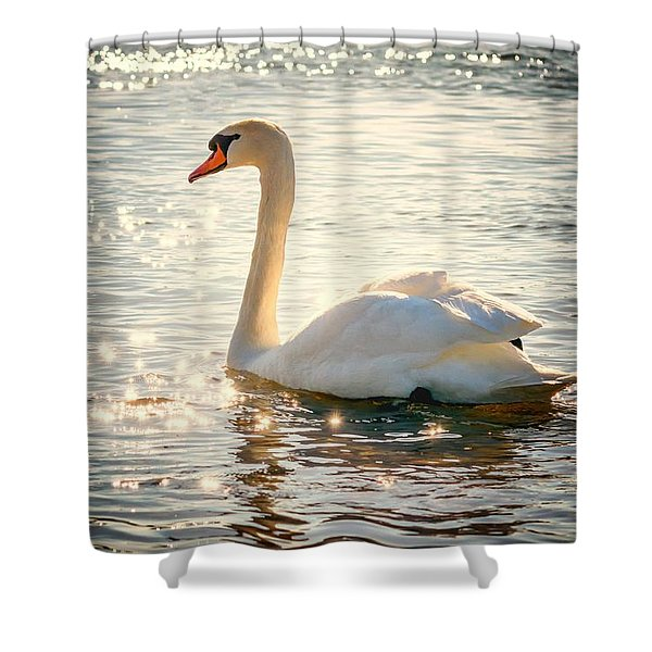 Swan On Golden Waters Shower Curtain