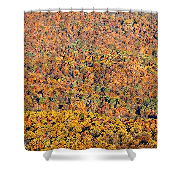 Sweeping Beauty Shower Curtain