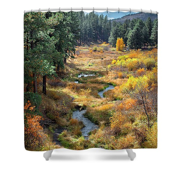 Swirling Colors Shower Curtain