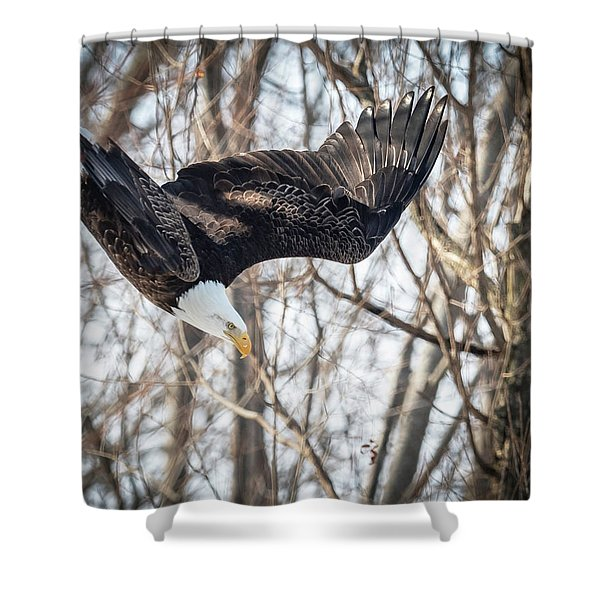 Swoopin Shower Curtain