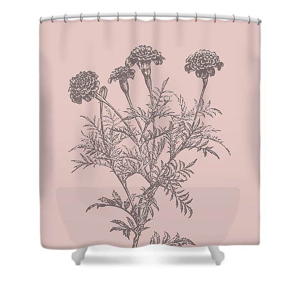 Tagetes Patula Blush Pink Flower Shower Curtain