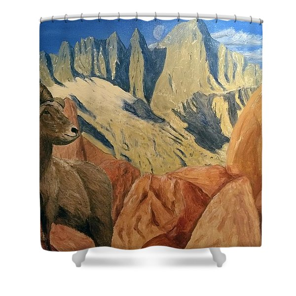 Shower Curtain featuring the painting Taking In The Morning by Kevin Daly