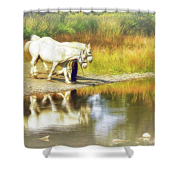 Leading The Horses To Water Shower Curtain