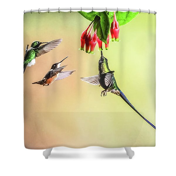 Taking Turns Shower Curtain