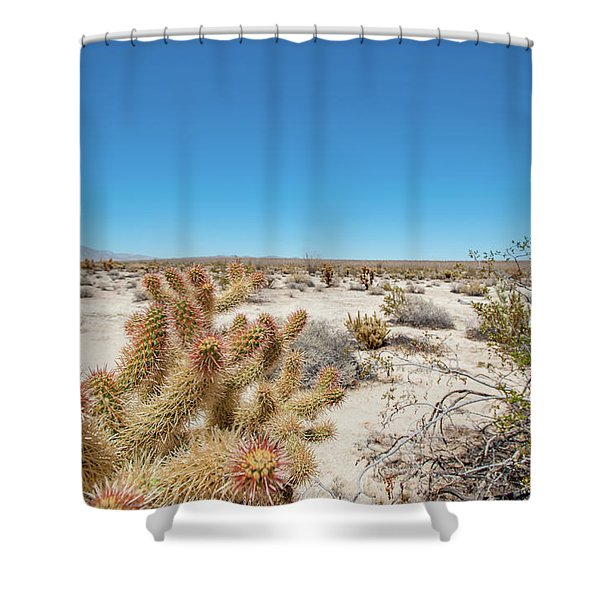Teddy Bear Cactus Shower Curtain