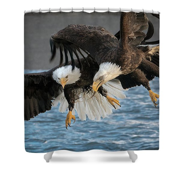 The Aerial Joust Shower Curtain