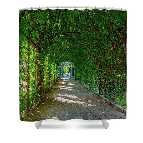 The Alley Of The Ivy Shower Curtain