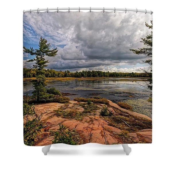 The Artistic Cranberry Bog Shower Curtain