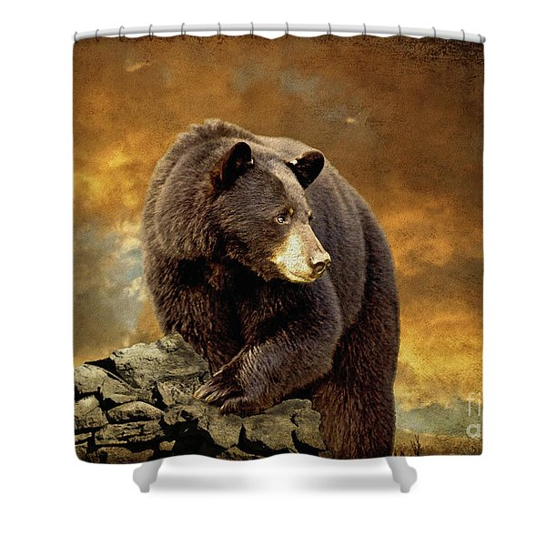 The Bear Went Over The Mountain Shower Curtain