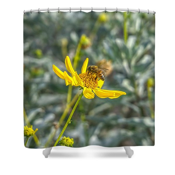The Bee The Flower Shower Curtain