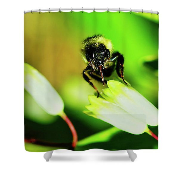 Shower Curtain featuring the photograph  The Bees Knees  by Meta Gatschenberger