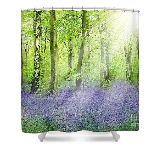 The Bluebell Woods Shower Curtain