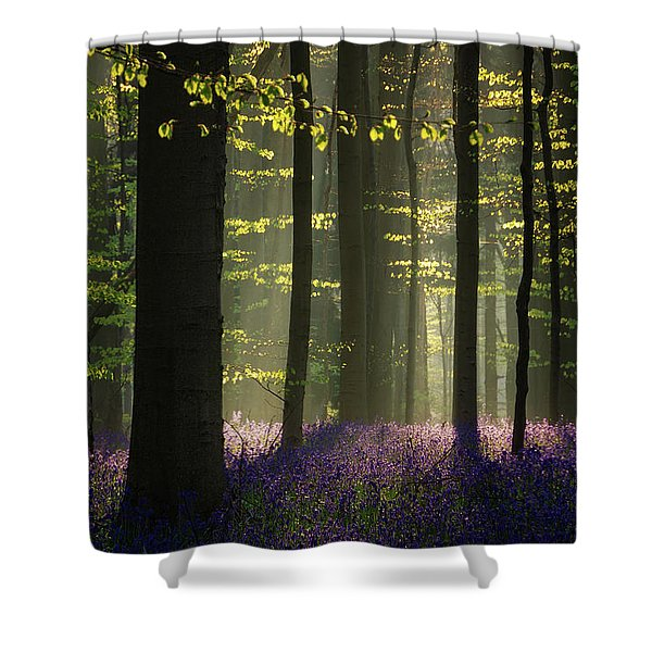 The Bluebells Shower Curtain