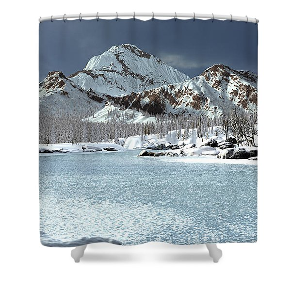 The Courtship Of Ice Shower Curtain
