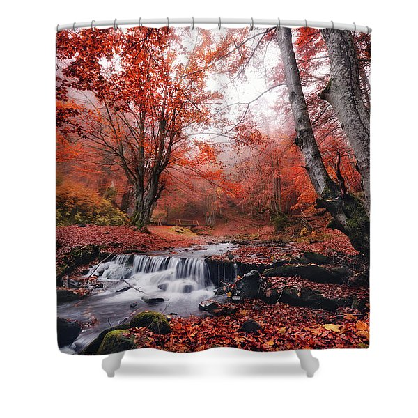 The Delights Of Late Autumn Shower Curtain
