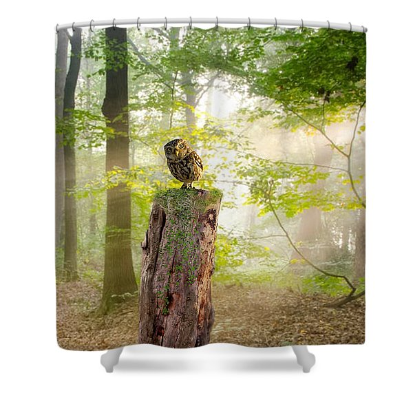 The Enchanted Forrest Shower Curtain