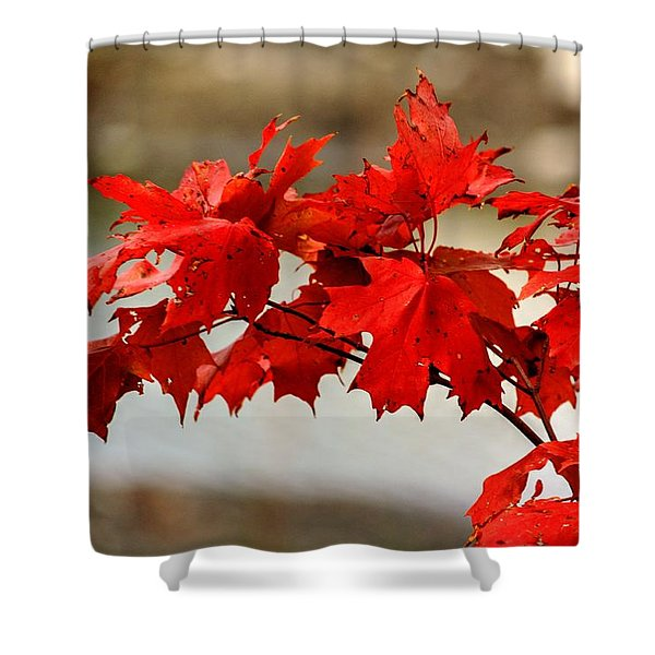 The Future. Shower Curtain