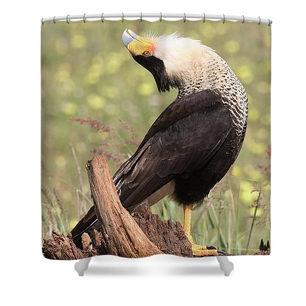 The Head Throw Shower Curtain