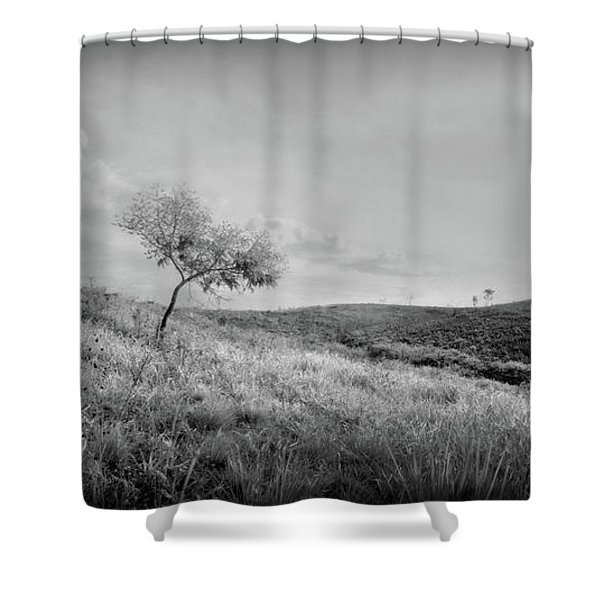 The Last Day Shower Curtain