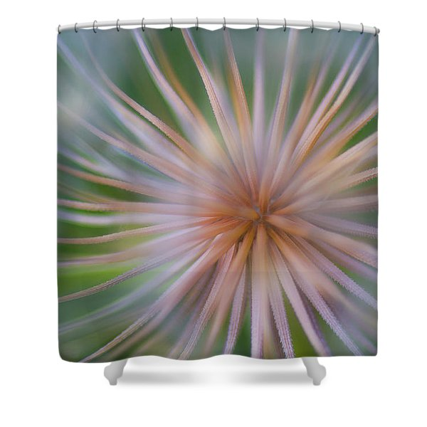 The Little Things Shower Curtain