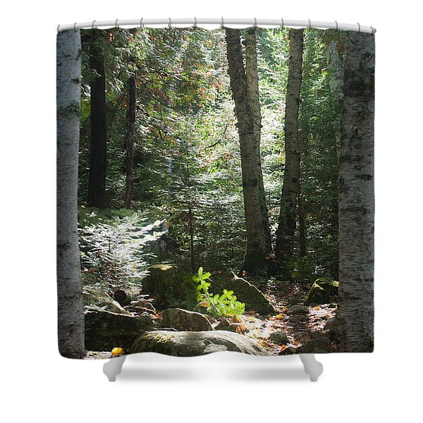 The Living Forest Shower Curtain