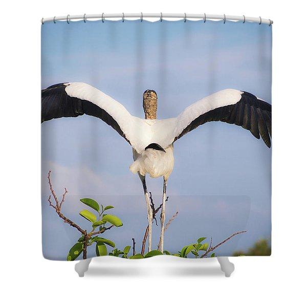 The Maestro Shower Curtain