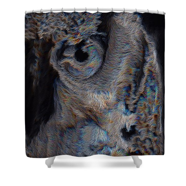 The Old Owl That Watches Shower Curtain