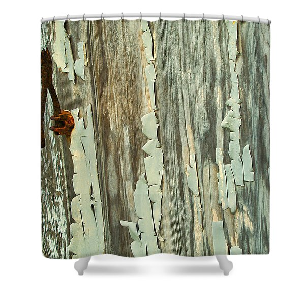 The Peeling Wall Shower Curtain