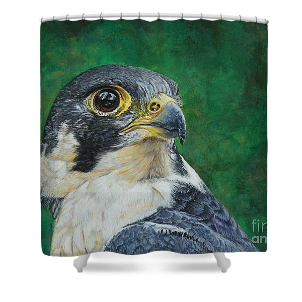 The Proud Peregrine....fastest Creature On The Planet Shower Curtain