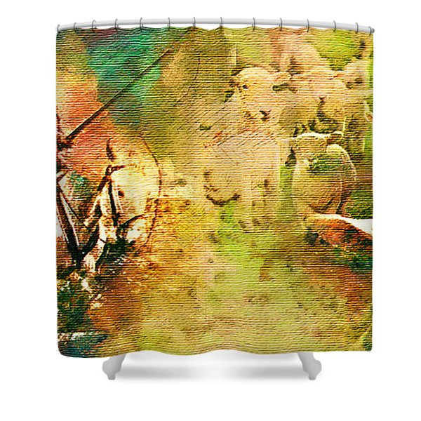 The Quijote Dream Shower Curtain