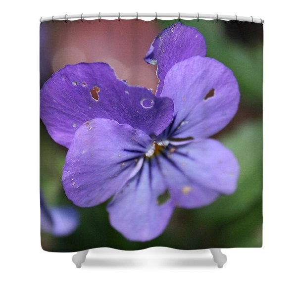 The Raggedy Viola Shower Curtain