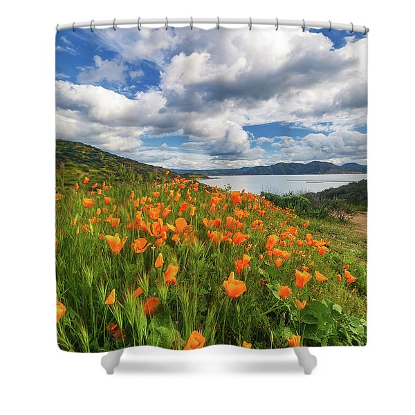 The Revival Shower Curtain