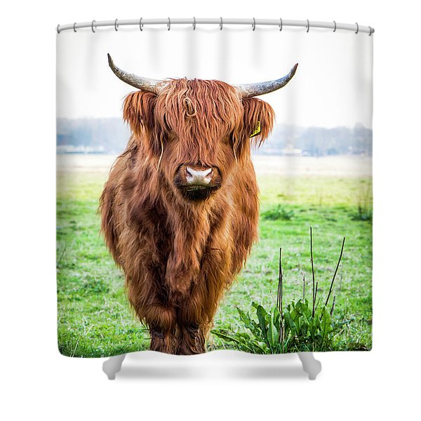 Shower Curtain featuring the photograph The Scottish Highlander by Anjo Ten Kate