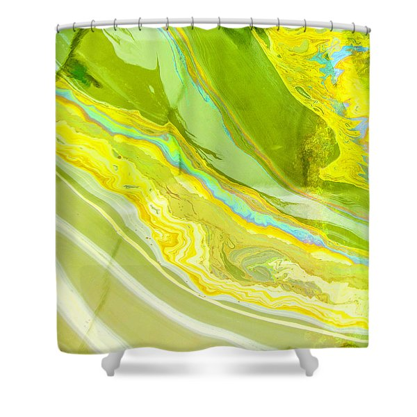 The Sheen From The Arizona Shower Curtain