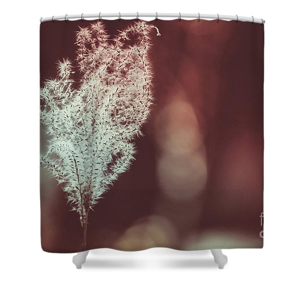 The Shine Shower Curtain